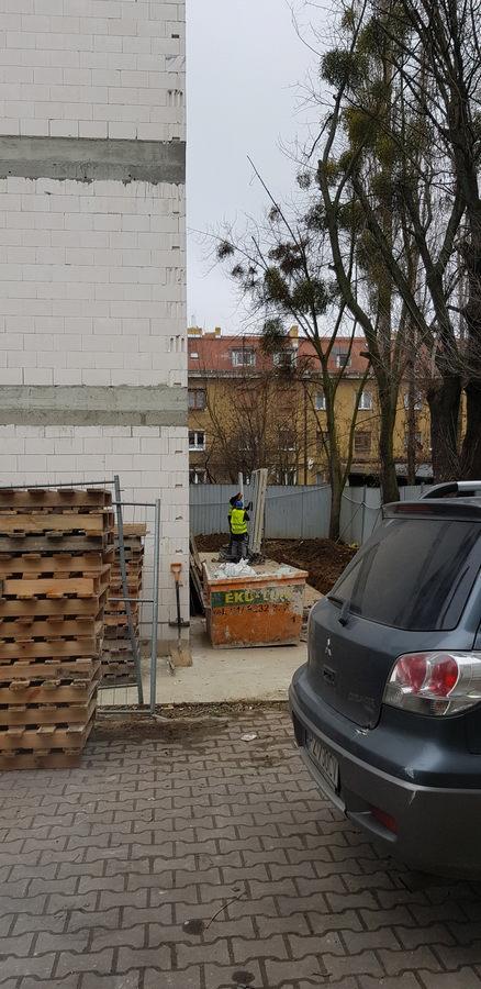 Okna dąb sheffield jasny - Poznań Szamarzewskiego